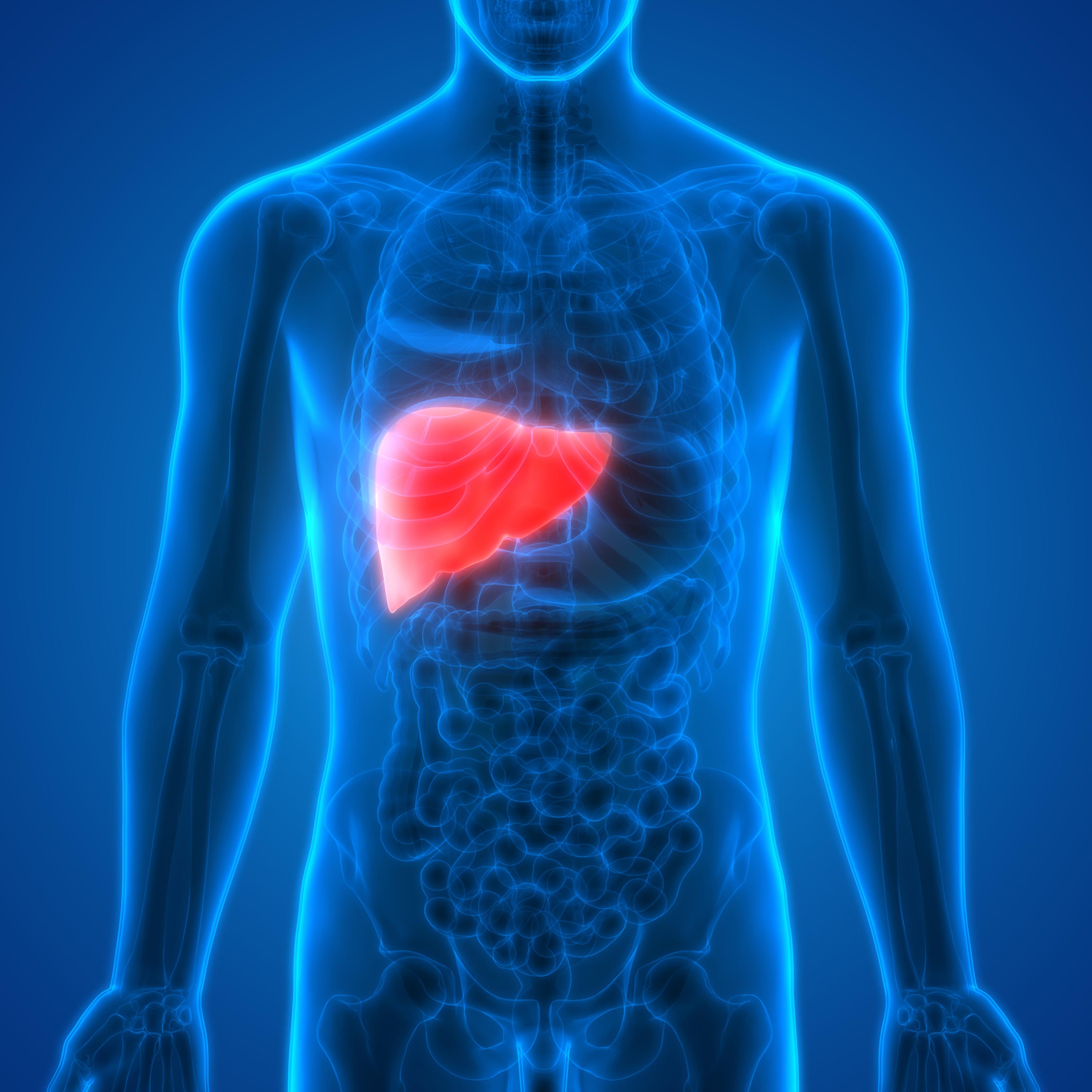 Summary Of Hepatitis Bc