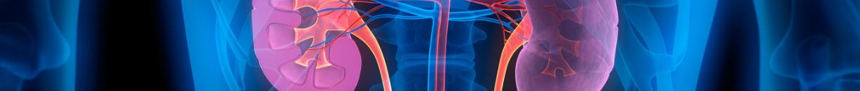 Image representing Cardio Renal